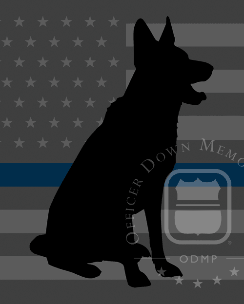 K9 Ganges I | Philadelphia Police Department, Pennsylvania